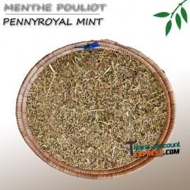 Pennyroyal mint