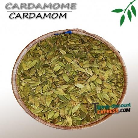 Cardamome
