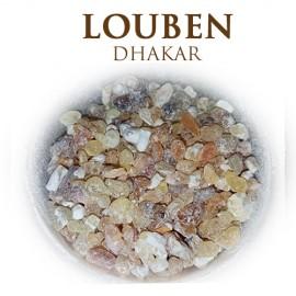 Louben Dhakar